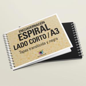 Espiral A3
